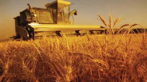 Сельскохозяйственный кредит в РФ